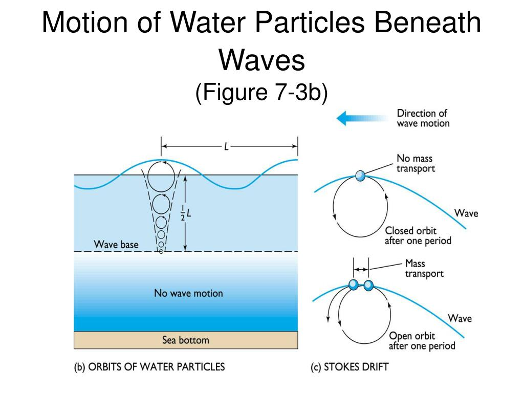 Motion of Water Particles Beneath Waves
