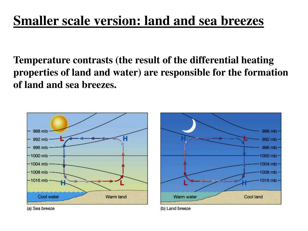 Smaller scale version: land and sea breezes