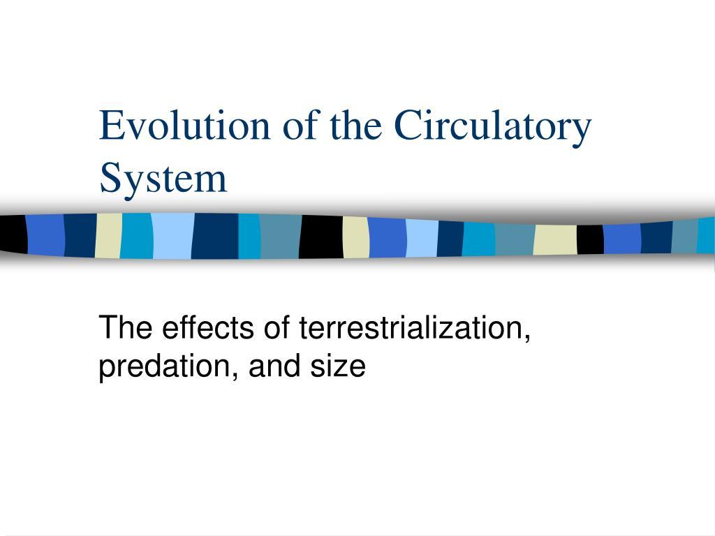 Evolution of the Circulatory System