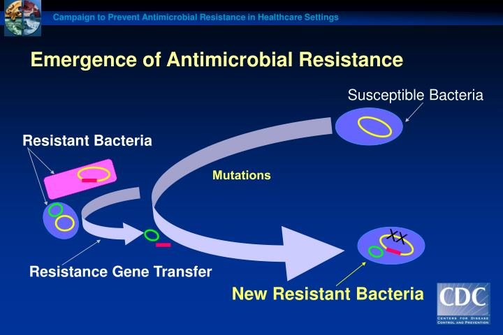 Emergence of antimicrobial resistance