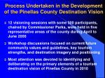 process undertaken in the development of the pinellas county destination vision