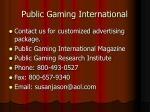 public gaming international2