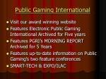 public gaming international6