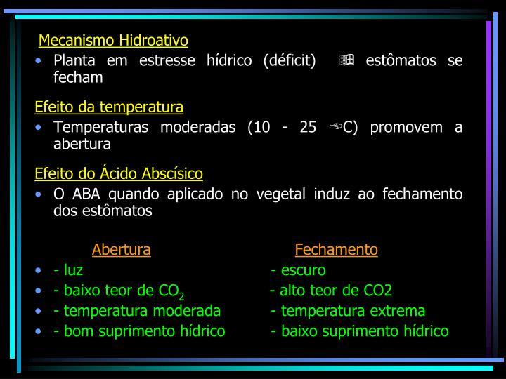Mecanismo Hidroativo