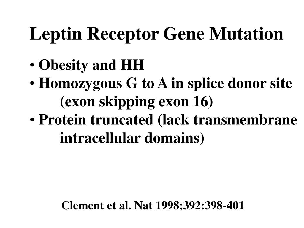 Leptin Receptor Gene Mutation