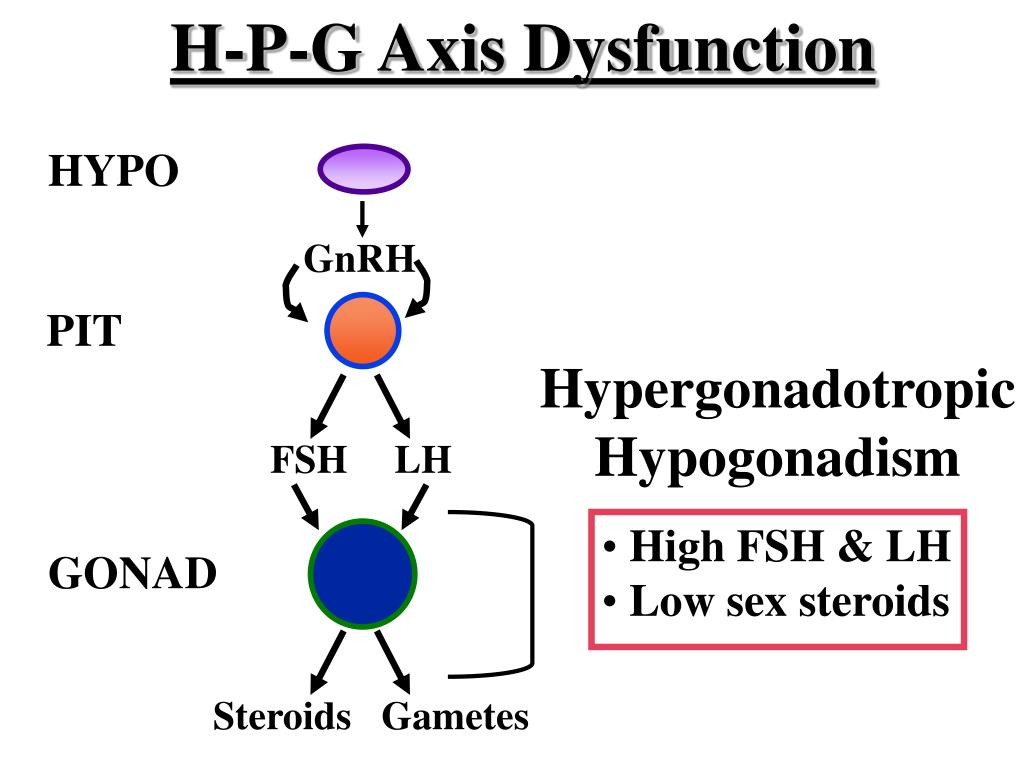 H-P-G Axis Dysfunction