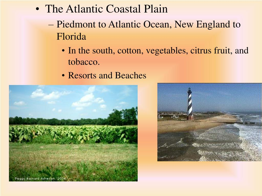 The Atlantic Coastal Plain