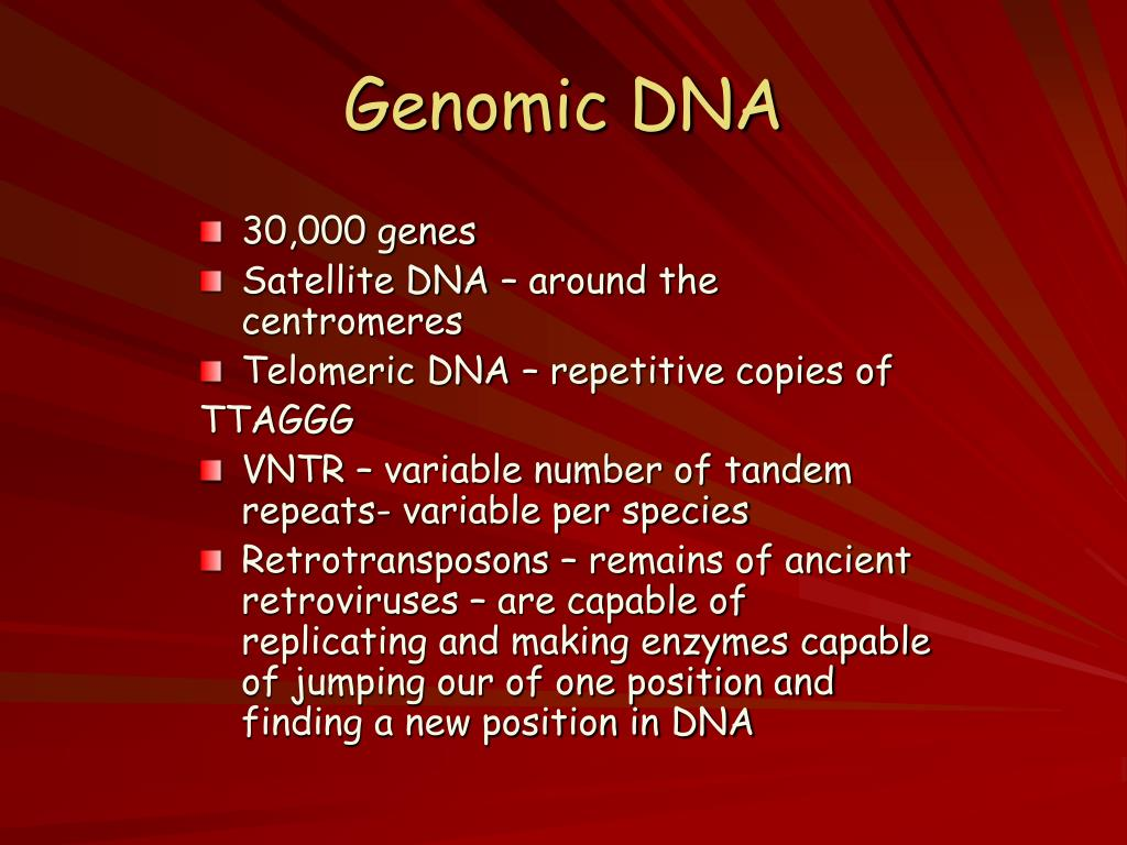 Genomic DNA