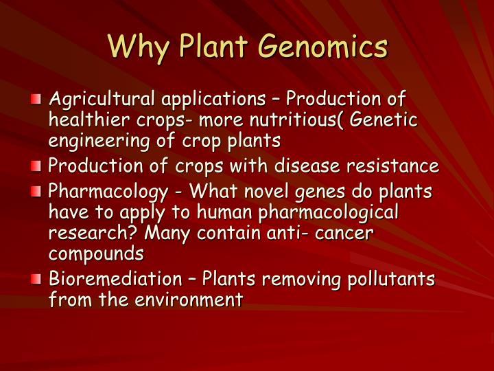 Why plant genomics