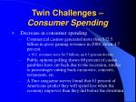 twin challenges consumer spending