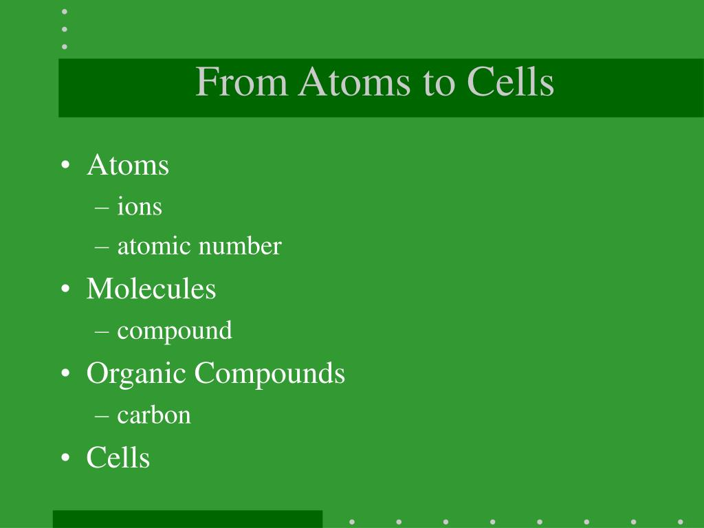 From Atoms to Cells