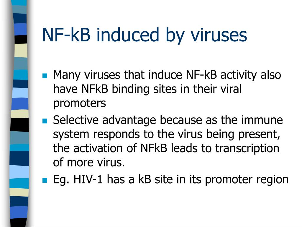 Many viruses that induce NF-kB activity also have NFkB binding sites in their viral promoters