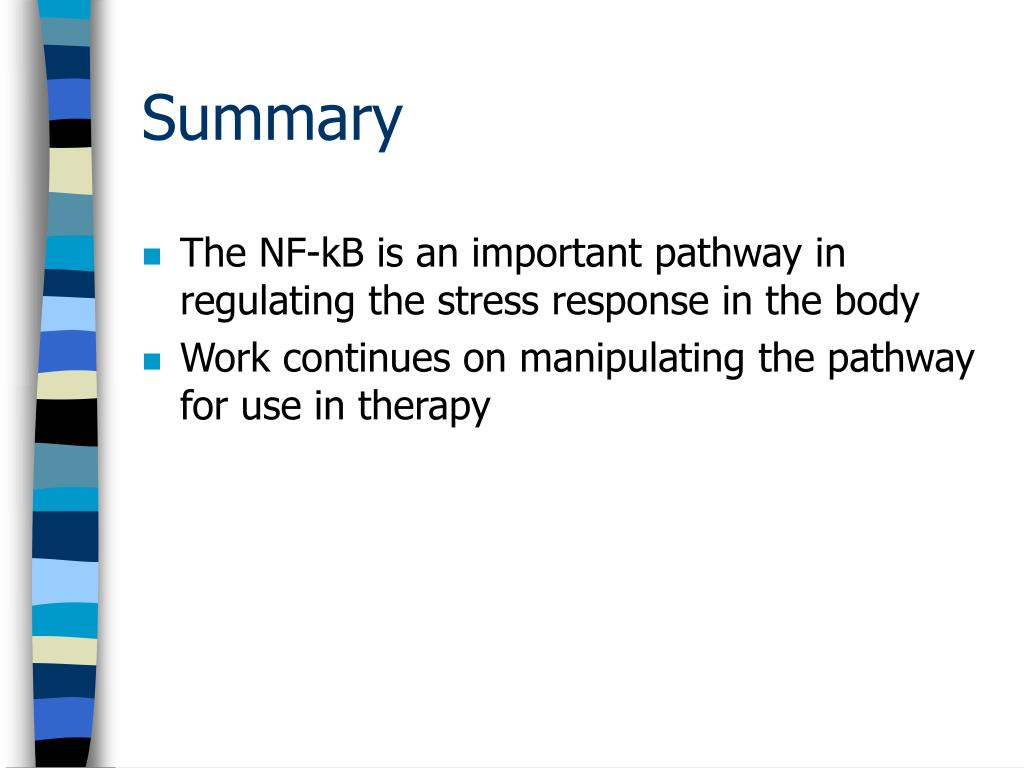 The NF-kB is an important pathway in regulating the stress response in the body