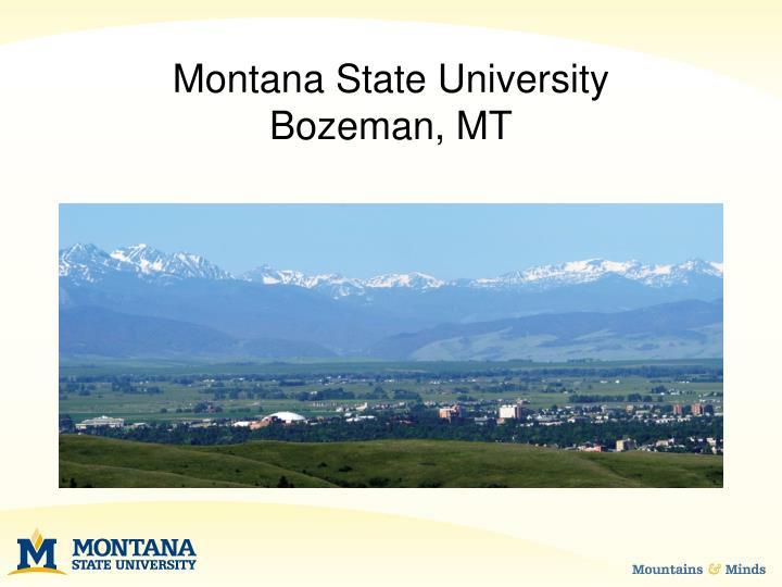 Montana state university bozeman mt