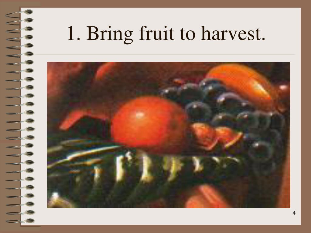 1. Bring fruit to harvest.