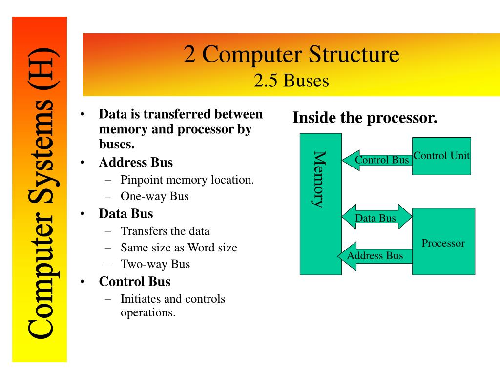 Data is transferred between memory and processor by buses.