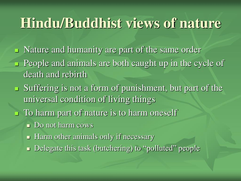 Hindu/Buddhist views of nature