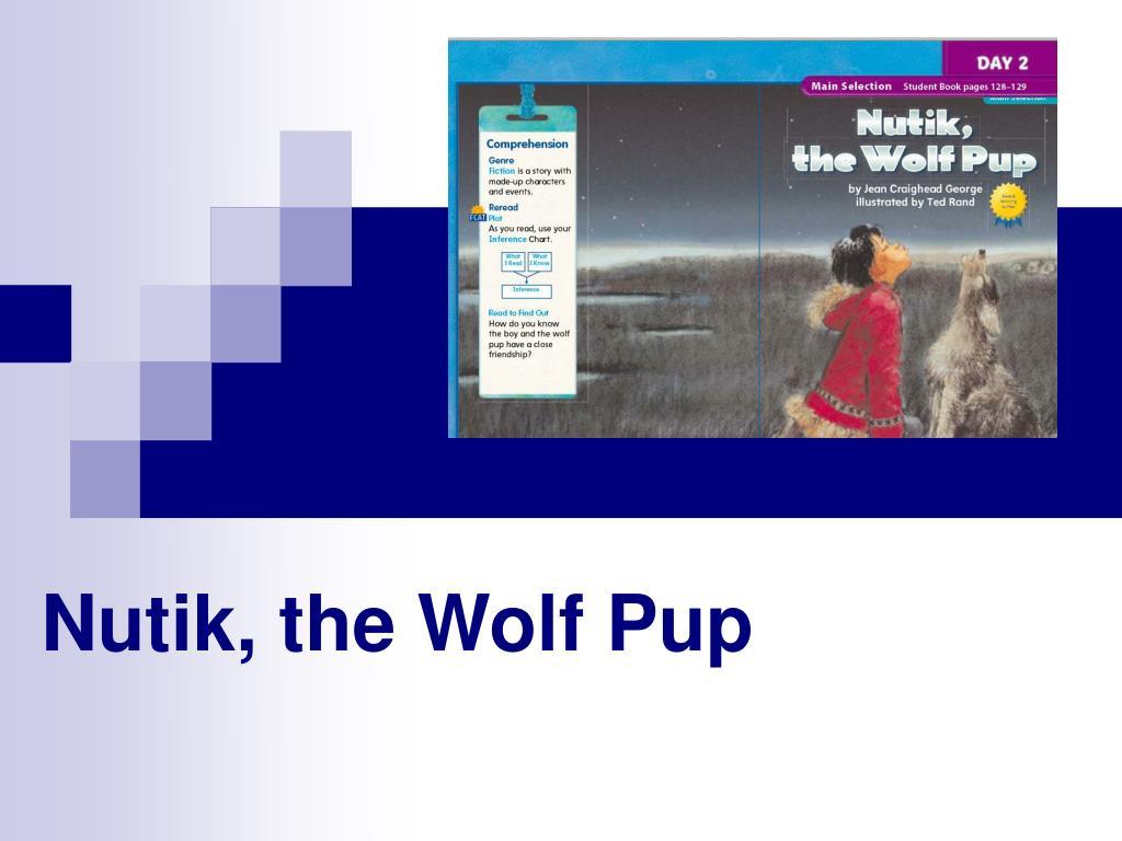 nutik the wolf pup l.