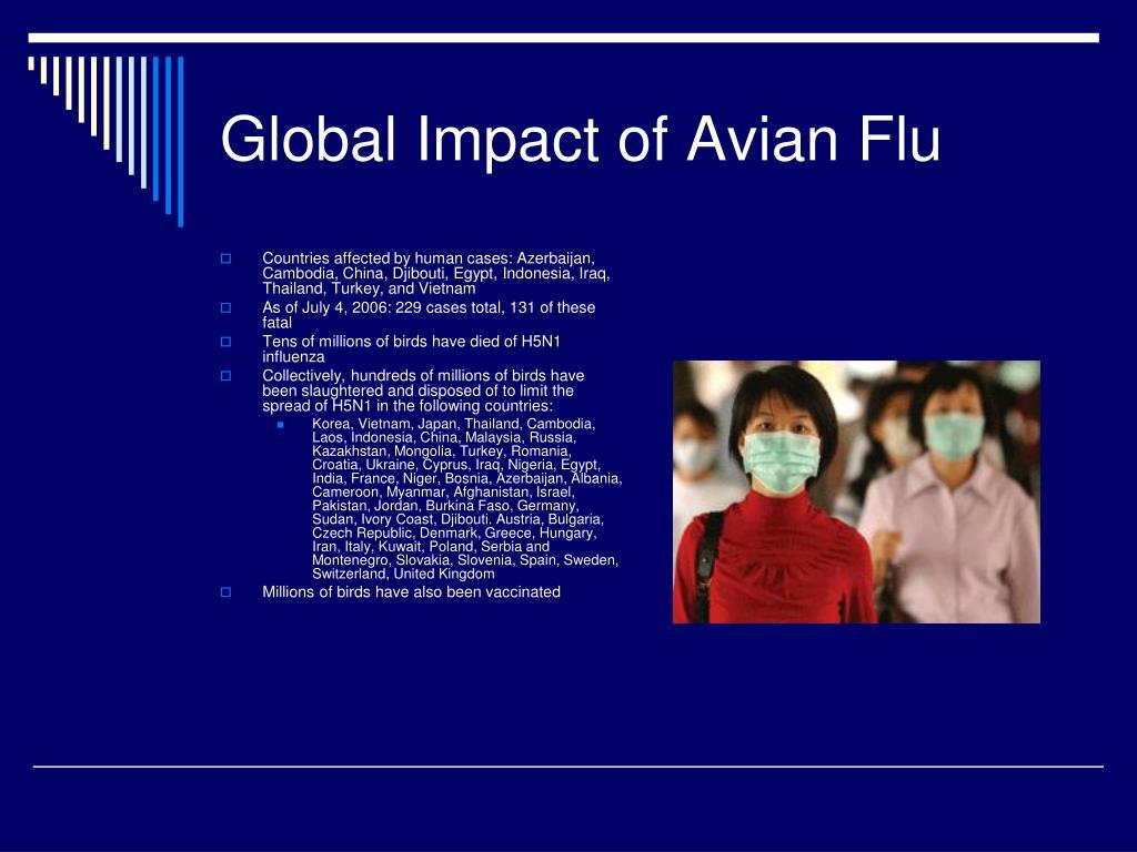 Global Impact of Avian Flu