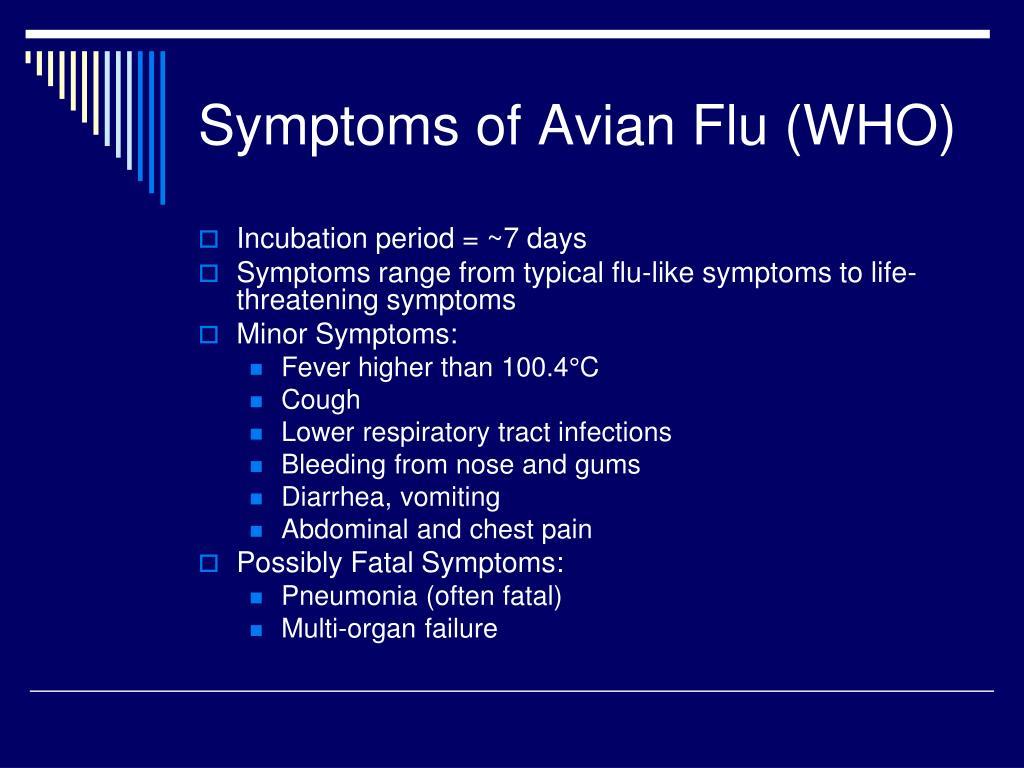 Symptoms of Avian Flu (WHO)
