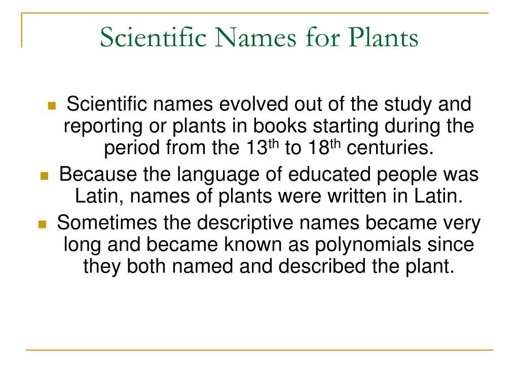 Scientific Names for Plants