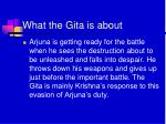 what the gita is about2