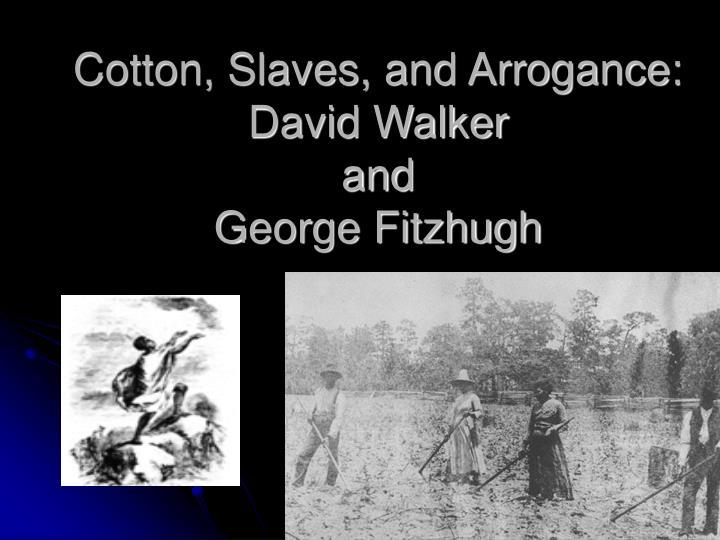 Cotton slaves and arrogance david walker and george fitzhugh