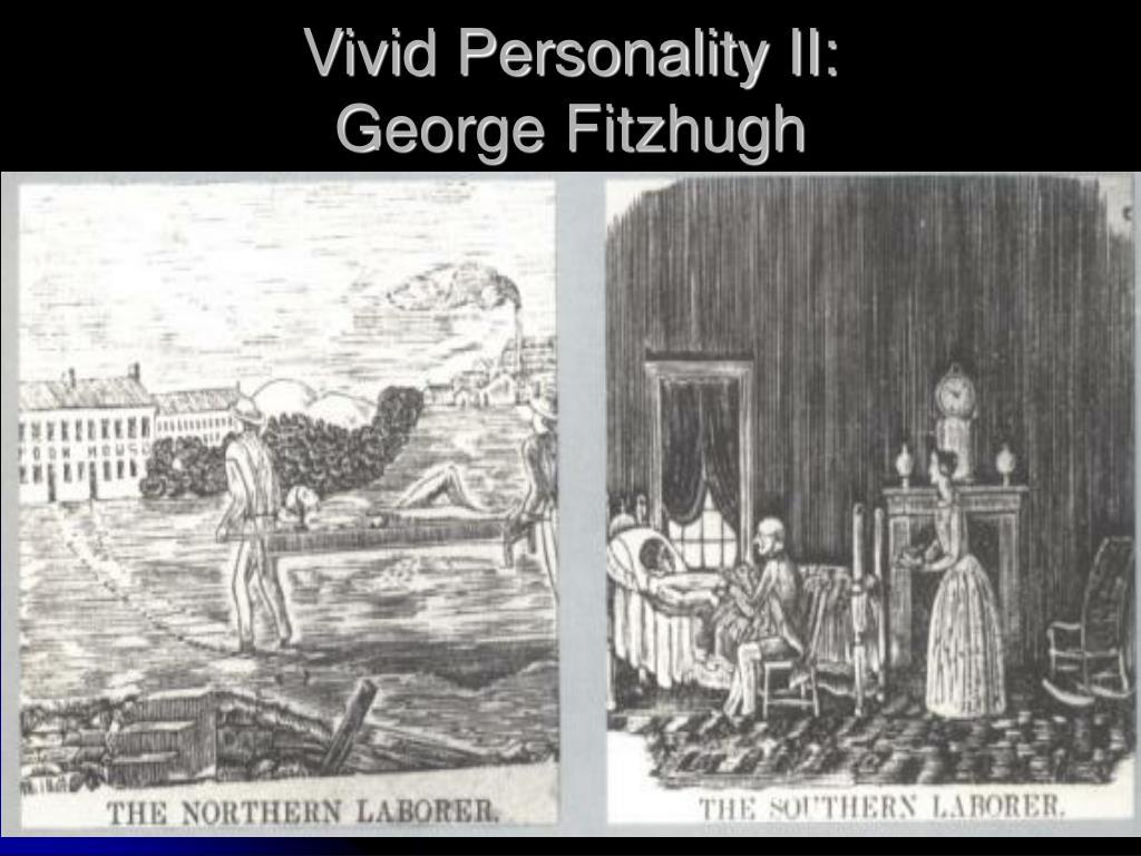 Vivid Personality II: