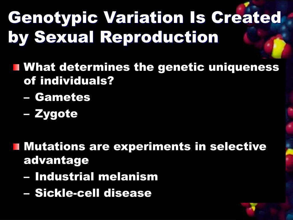 Genotypic Variation Is Created by Sexual Reproduction