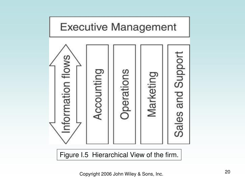 Figure I.5  Hierarchical View of the firm.