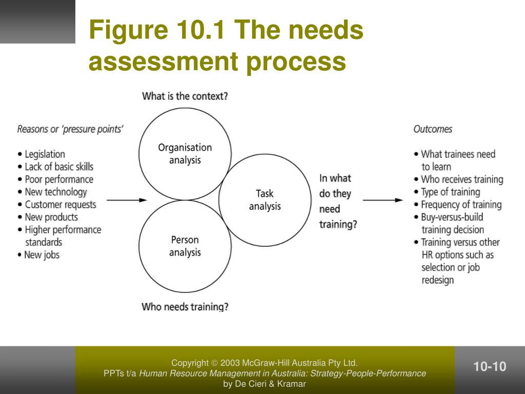 Figure 10.1 The needs assessment process