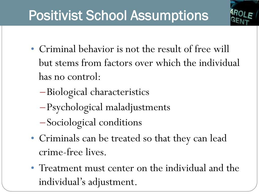 Positivist School Assumptions