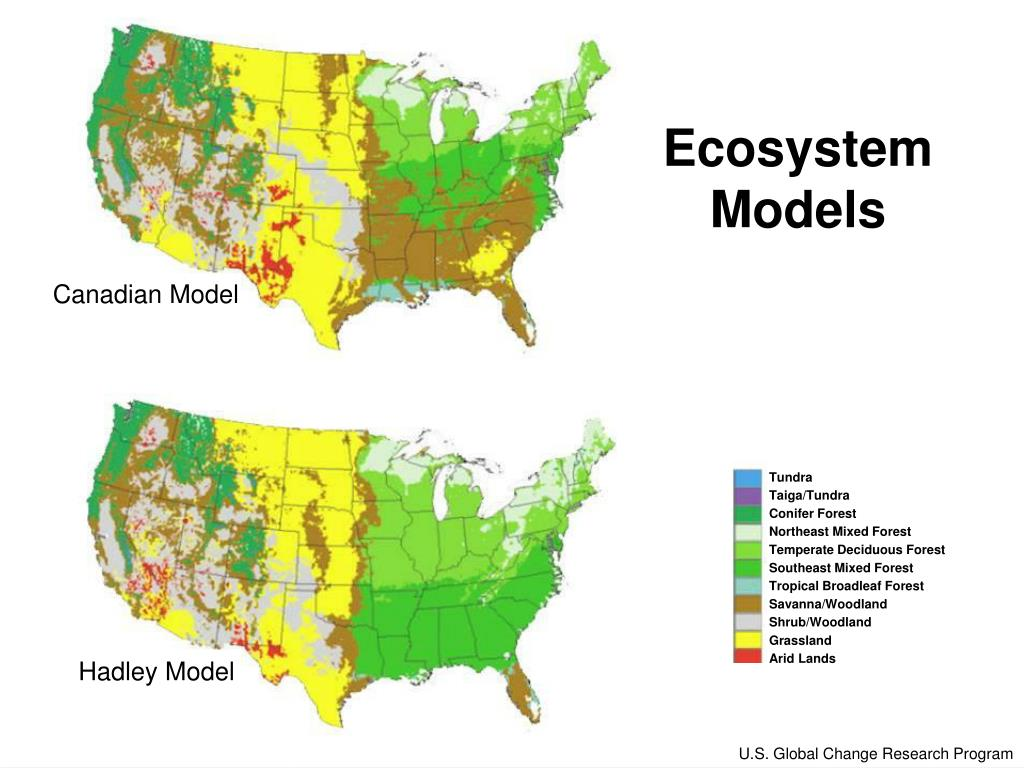 Ecosystem Models