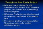 examples of state special projects17