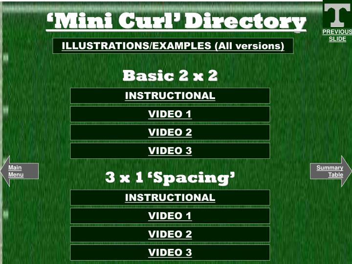 Mini curl directory