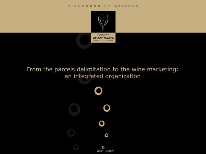 From the parcels delimitation to the wine marketing an integrated organization