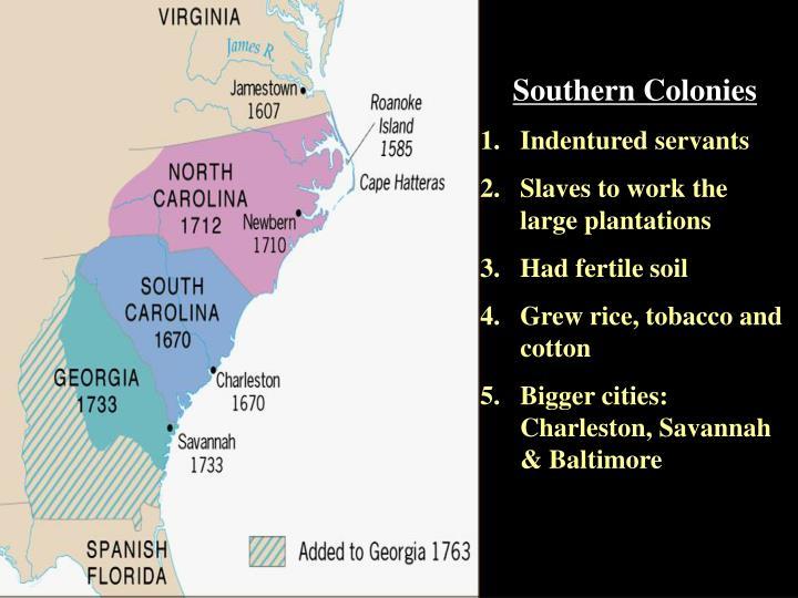 S colonies