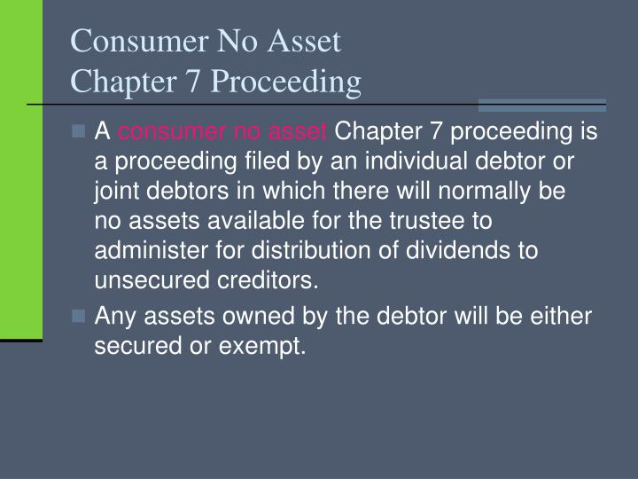 Consumer no asset chapter 7 proceeding