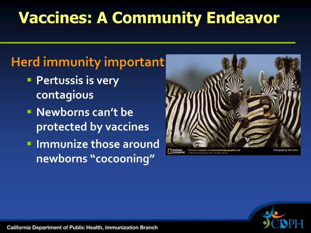 Vaccines: A Community Endeavor