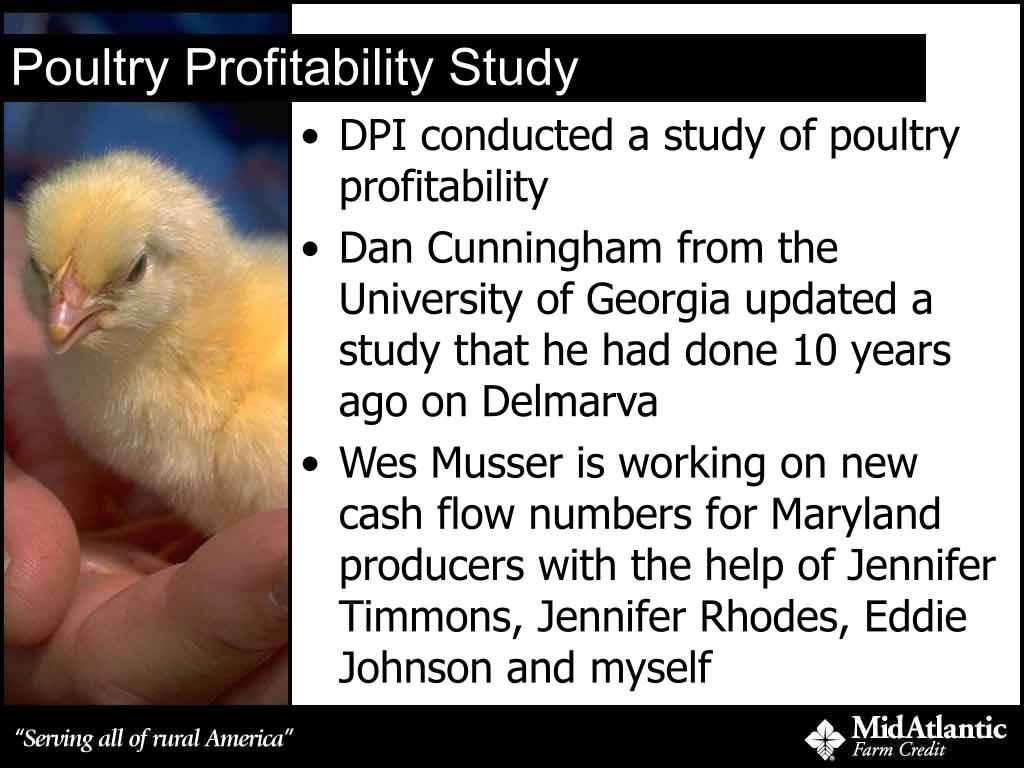 Poultry Profitability Study