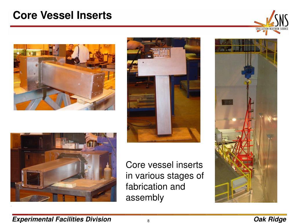 Core Vessel Inserts