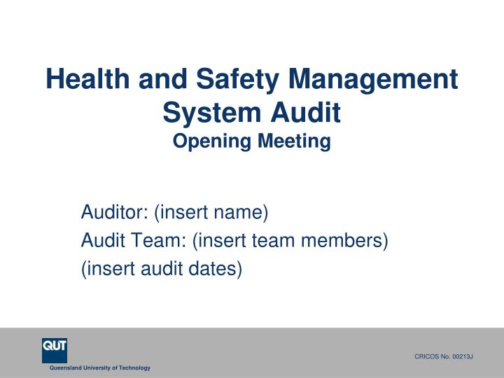 health and safety management system audit opening meeting n.