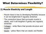 what determines flexibility9