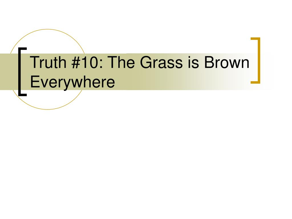 Truth #10: The Grass is Brown Everywhere