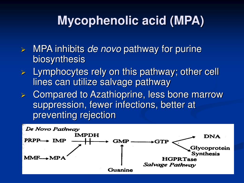 Mycophenolic acid (MPA)