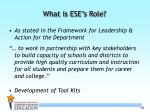 what is ese s role
