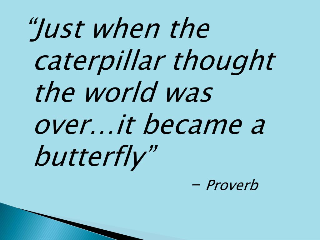 """Just when the caterpillar thought the world was over…it became a butterfly"""