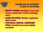 examples of internet client platforms19