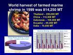 world harvest of farmed marine shrimp in 1999 was 814 250 mt