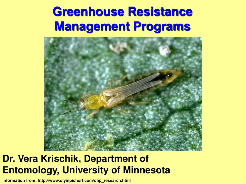 greenhouse resistance management programs l.